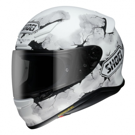Casque Shoei NXR Ruts TC6